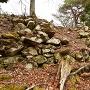 本丸南側石垣