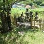ふもとにある古墓 井上氏墳墓