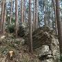 主郭の石塁替わりの自然岩