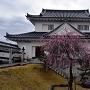 御矢倉(資料館)