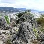石垣と市街地(山頂からの風景)