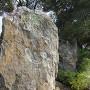 宗家の石碑