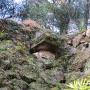 三ノ丸北側石樋