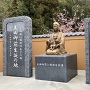 信長の母、土田御前の石碑