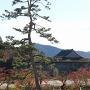 堀端の紅葉と大書院[提供:篠山市]