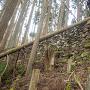 周山城 西曲輪北面の石垣