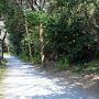 菊田遊歩道