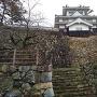 川側から見た櫓と石垣