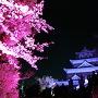 桜と天守(チームラボ 光の祭)