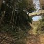 空堀跡(本丸ー二の丸)
