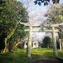 主郭(桜の季節)