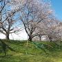 城址風景(春)