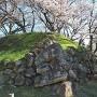 石垣③(春)