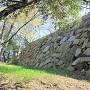 二の丸石垣(南西側)