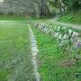 42㍍の石垣