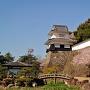 板敷櫓と桜
