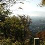 大野市街を本丸跡から見る