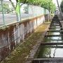 旧鹿島城 水堀