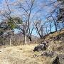 帯曲輪(桜の季節)
