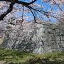 二之丸御角櫓石垣跡