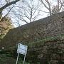 本丸跡石垣(埋門跡側から)