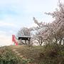 本丸跡(米倉跡から)