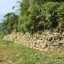 城山南側の石垣