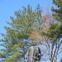上杉謙信公銅像(春日山神社横)