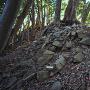 詰の城(伝・大天守)の石塁