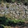 二の丸石垣(西側)