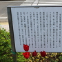 府中城の解説看板