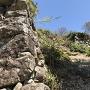 西の丸石垣横から二の丸方向