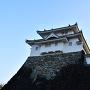 稲荷櫓(城北より)