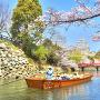 姫路城と桜[提供:(公社)ひょうごツーリズム協会]