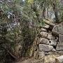 平井丸裏側の石垣