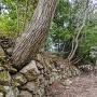 池田丸内部の石垣