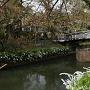 三之丸水堀と護国神社の橋
