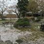 日本庭園(本丸)