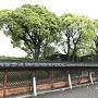 神社垣根越しの本丸
