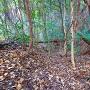 竪堀◆矢野城跡