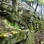 ホウズキ段下の石垣
