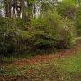 東の木戸跡