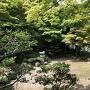 清瀧寺徳源院庭園