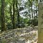 本丸櫓台にある石碑