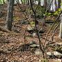 秋葉山出丸の南側斜面の石垣