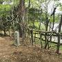 明智城 逆茂木