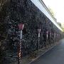 本丸大手門横の石垣