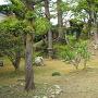 武家屋敷旧田村家の庭