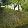 二の丸北面石垣
