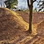本郭北側の出枡形土塁と空堀